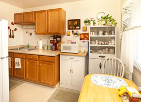 Spring Valley Apartment Kitchen